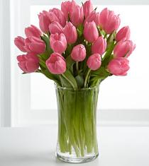 Photo of Pink Prelude Tulips Vased - FP89