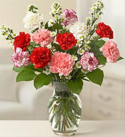 Photo of flowers: Long Lasting Fragrant Carnations Vased