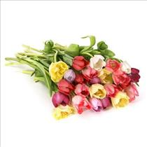 Photo of Loose Mixed Tulips Gift Wrapped - LooseTulips