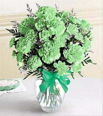 Photo of flowers: Green Carnations Arranged
