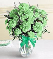 Photo of Green Carnations Vased     - BF1101
