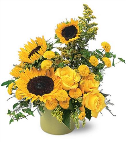 Photo of flowers: A Pot Of Sunflowers