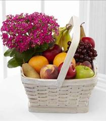 Photo of Garden's Paradise and Fruit Basket - C30-4929