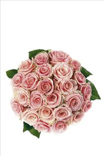 Photo of Bouquet of Pink Roses - IC-5103