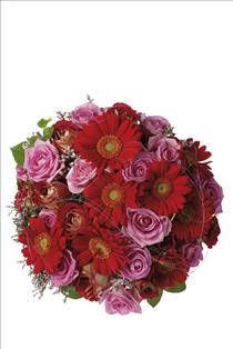 Photo of Bouquet of Roses and Gerberas - IC-510