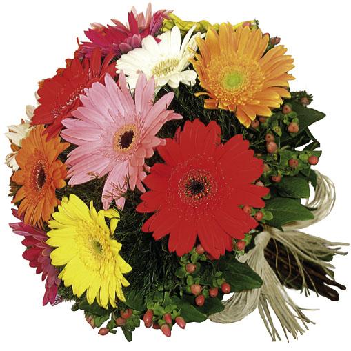 Photo of flowers: Gerbera Bouquet