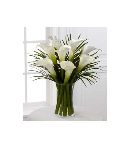 Photo of BF5812/S11-4461d (Approx. 8 calla lily stems)
