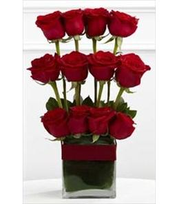 Photo of Towering Beauty Rose Arrangement - S19-4477