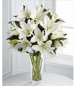 Photo of Light In Your Honor Oriental Lilies - S4-4443