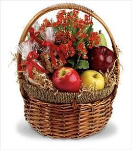 Photo of Health Nut Basket - T108-2