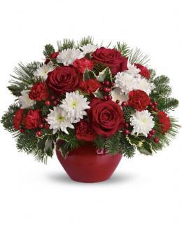 Photo of flowers: Christmas Treasure
