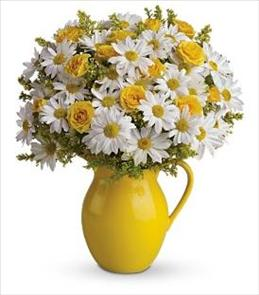 Photo of flowers: Sunny Day Pitcher of Daisies