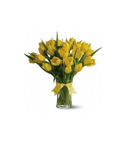 Photo of flowers: Sunny Yellow Tulips in Vase