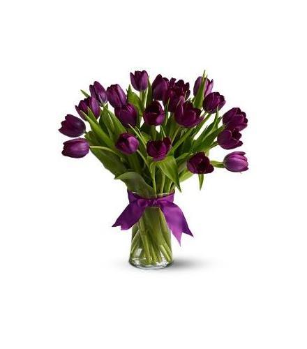 Photo of flowers: Passionate Purple Tulips