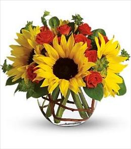 Photo of flowers: Sunny Sunflowers