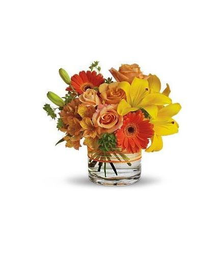 Photo of flowers: Sunny Siesta in Vase
