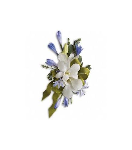 Photo of flowers: Blue and White Elegance Corsage