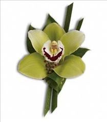 Photo of Green Orchid Boutonniere - T202-3