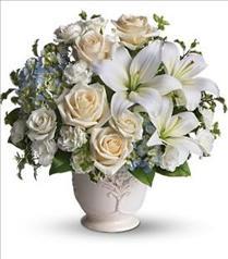 Photo of flowers: Beautiful Dreams