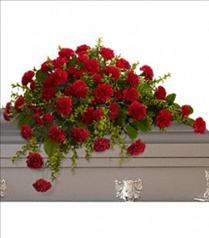 Photo of Adoration Carnation Casket Spray - T242-2