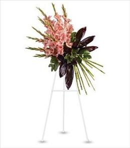 Photo of Elegant Gladioli Tribute Spray - T246-1