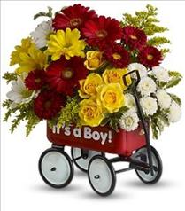 Photo of Baby's Wow Wagon by Teleflora - Boy - T35-1
