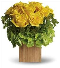 Photo of Teleflora's Box of Sunshine - T72-2