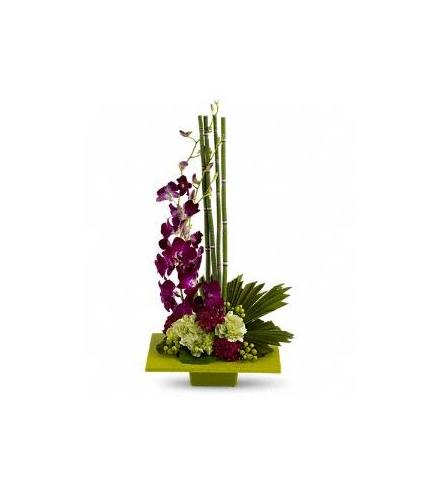 Photo of flowers: Zen Artistry with Orchids