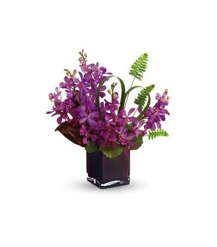 Photo of flowers: Island Princess Orchids  in Cube Vase