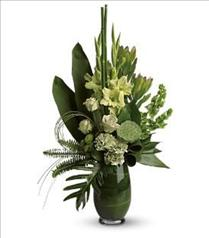 Photo of flowers: Limelight Bouquet