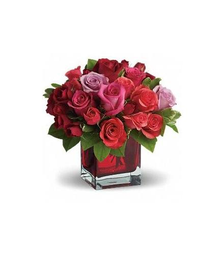 Photo of flowers: Madly in Love Roses
