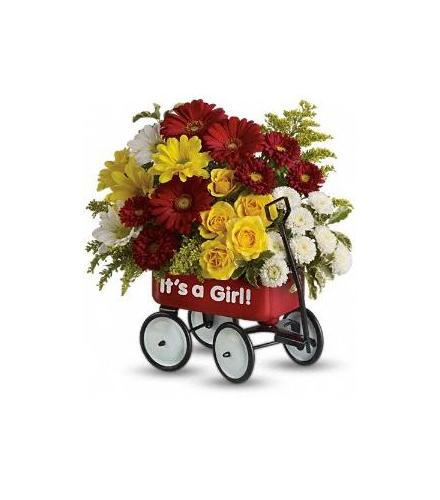 Photo of flowers: Baby's Wow Wagon Baby Girl