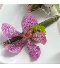 Photo of The FTD Pink Mokara Boutonniere - W17-4665