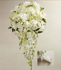 Photo of The FTD White Wonders Bouquet - W7-4633